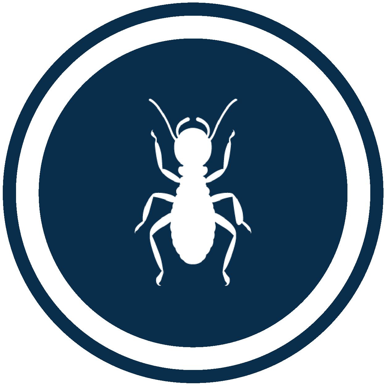NewPestIcon_Termite
